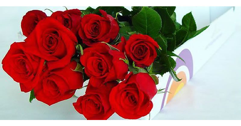 Descuentos para enviar flores por Internet