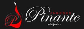 Jamones Pinante